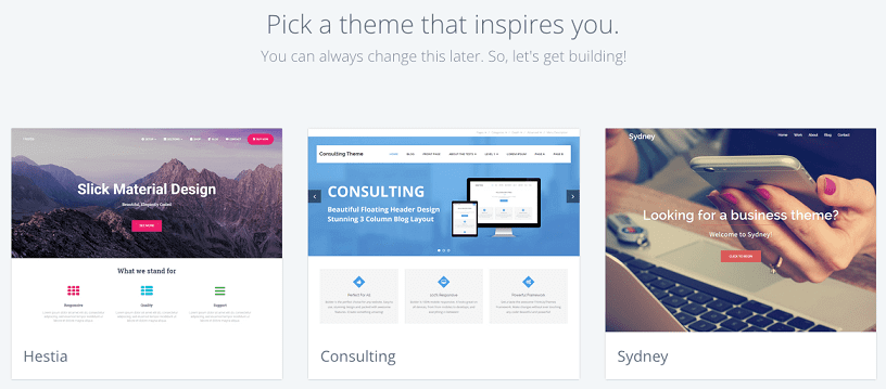 Pick your WordPress theme for your website or blog