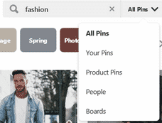 Pinterest search options