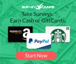 14 Best Survey Sites With Low Minimum Payout! [IN 2019 ]